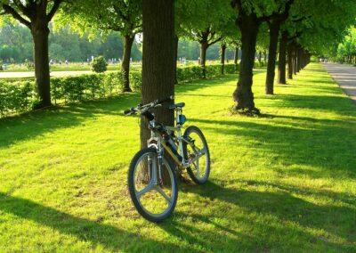 Fahrraddiebstahl in der Hausratversicherung