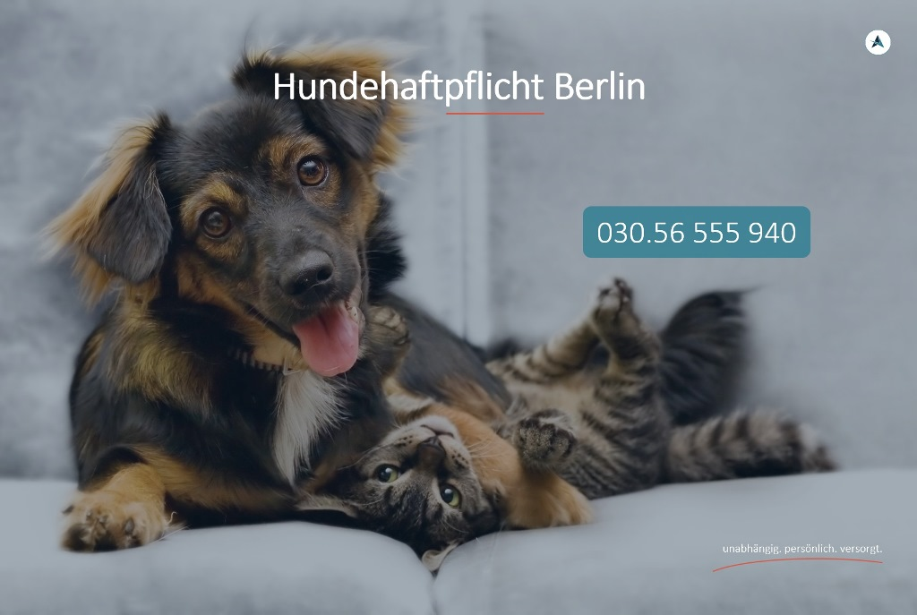 Hundehaftpflicht-Berlin-Hundehaftpflichtversicherung-Berlin-Hund-Haftpflicht-Berlin-Agentin-Versicherungsmakler-Berlin-Andre-Boettcher
