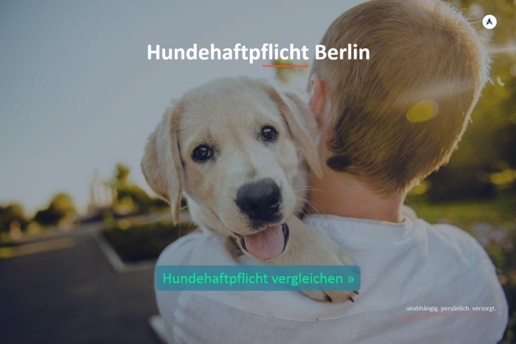 Hundehaftpflicht-Berlin-vergleichen-Angebot-berechnen-Versicherung-Agentin-Versicherungsmakler-Berlin-Andre-Boettcher