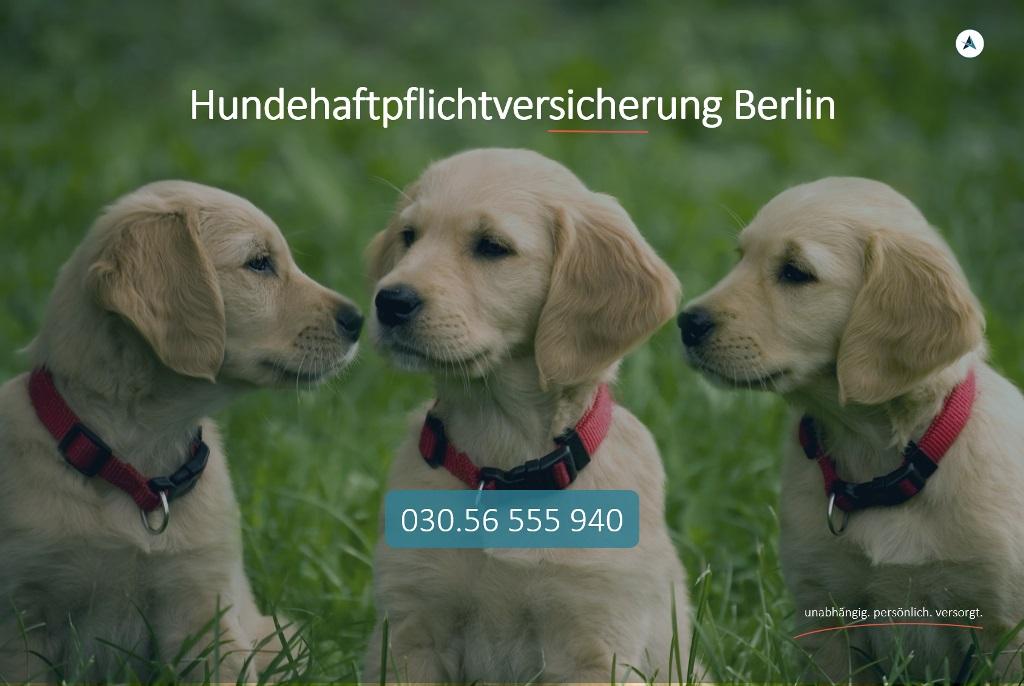 Hundehaftpflichtversicherung-Berlin-Hundehaftpflicht-Berlin-Hund-Haftpflicht-Berlin-Agentin-Versicherungsmakler-Berlin-Andre-Boettcher
